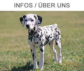 Infos Hundewald Harz
